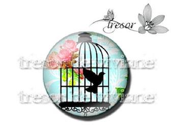 PA448 cabochons glass manual Retro, Cages, birds, Lolita