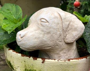 Dog Stone Head / Bust Ornament-Statue-Sculpture Gift/Keepsake/Remembrance Birthday