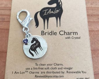 Charm, Horse Bridle Charm, Equine Bridle Charm, English Bridle, Western Bridle, Love Horses,Horse Jewelry, Stainless steel Charm, Equine