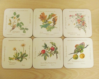 Clover Leaf six boxed vintage coasters 1977 Country Diary Collection nature flowers Edwardian Lady