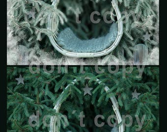 2 Christmas/Winter backdrops in the set