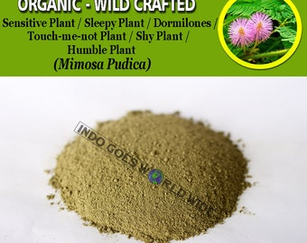 POWDER Sensitive Plant Sleepy Plant Dormilones Touch-me-not Plant Shy Plant Humble Plant Mimosa Pudica Organic WildCrafted Natural Herbs