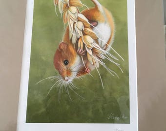 Signed Limited Edition Mounted Print- Single Fieldmouse