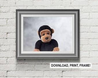 Baby Monkey print,Baby room decor,Wall art,Peekaboo Monkey,Monkey photo,Downloadable print,Nursery Room Wall Art, Baby room art