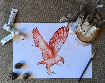 Barn owl art, barn owl drawing, barn owl, barn owl gift, wildlife art, barn owl