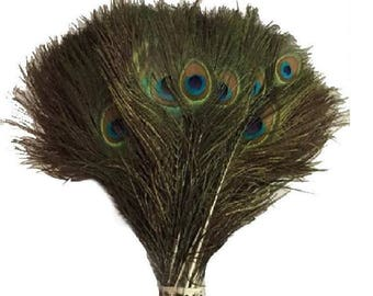10 peacock feathers: