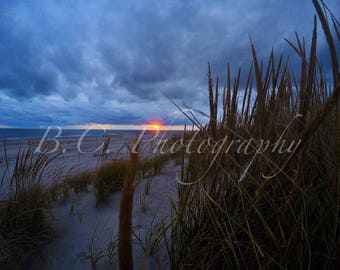 Sand Dunes, Long Beach, Long Island, Lido Beach, Picture