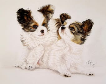 Puppy , Dog, Original PAPILLONS Artwork, hand drawing, portrait, DOG puppy Lover, commission drawing, Animal lover GIFT