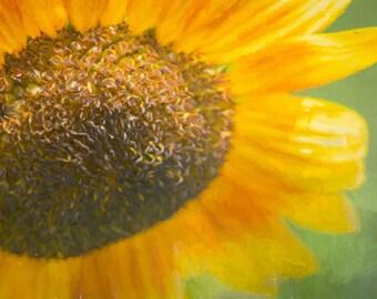 Painterly Sunflower II Nature Photograph Digital Download