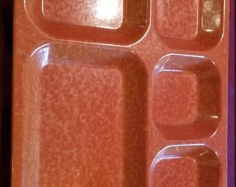 1970's Acrylic Lunch Tray