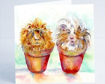 Bill & Ben Guinea Pigs - Greeting Card - Taken from an original Sheila Gill Watercolour Painting.