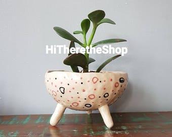 The Spotty Dotty Collection - made to order, ceramic, succulent pot, cactus pot, plant pot, home studio pottery, home decor, pinch pot.