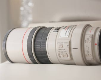 Canon 300mm f4 IS L