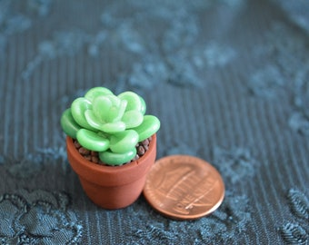 Miniature Potted Clay Succulent Plant