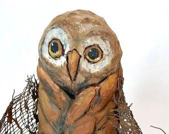 Skat Owl in Mouse Pelt - USA