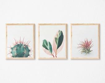 Print Set of 3, Plant Prints, Leaf Wall Art, Botanical Art, Bedroom Wall Decor