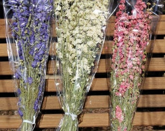 Save25% double bloom Larkspur dried stems-Blue-Pink-purple or White preserved flowers-4-5 oz bundles-Dried wedding floral in white