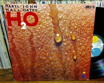 Daryl Hall And John Oates H2O Behind Vintage Vinyl Record