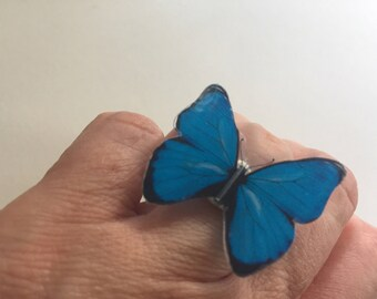 Butterfly adjustable ring choose your color