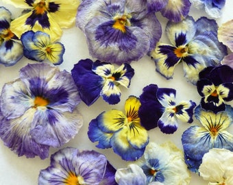 Dry Pansies, Real Flowers, Flower Confetti, Centerpiece, Flower Girl, Wedding Decoration, Pot Pourri, Sachets, Craft Supply, 50 Real Pansies