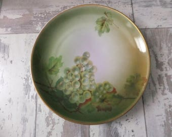 1800s Plate Hutschenreuther Hand Painted Green Grapes Leaves Decorative Collector Bavaria Wall Decor Collectible