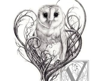 Barn Owl Print - Owl Art - Owl Print  Limited Edition Giclée Print - Pencil Drawn Nature Art For The Home