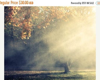 Autumn Landscape Photograph - sun rays golden trees heavenly smokey foggy ethereal dreamy 8x10