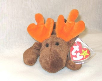 TY Beanie Baby Chocolate the Moose - 110a