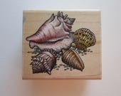rubber stamp - SEASHELLS - Rubber Stampede A817E