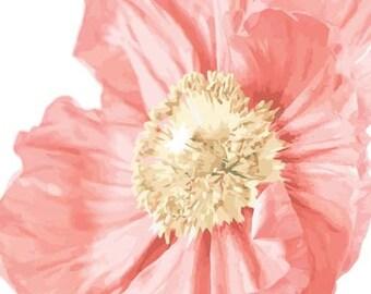 Peach Pink Poppy Garden Flower- Vinyl Decal Wall Décor