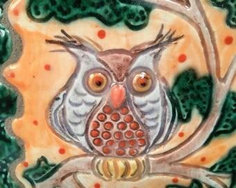 Decorative tile/owls/owl tile/ceramic tile/wall hanging/owl art/clay tile/pottery tile