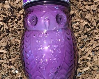 Violet 15 oz Owl Soy Candle