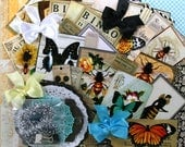 Bee and Butterfly Deluxe Creativity Kit Polly's Paper Studio Paper Bow Images Clips Tinsel Twine Sequins Pins 79 Pieces