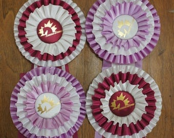Rosette Horse Prize Ribbons Lot of 4 Ribbons, instant collection, equestrian ribbons, altered art, western decor