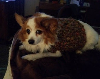 Small Dog sweater- made of recycled material yarn