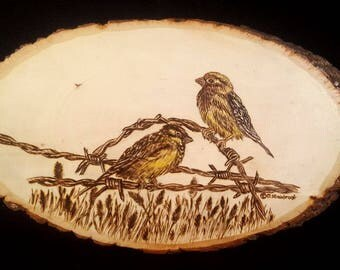 Wood Burning of Finches