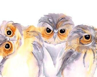 Bird Art,  Three Owls Watercolor Print, Large Owl Art Print, 12 x 16 Owl Art