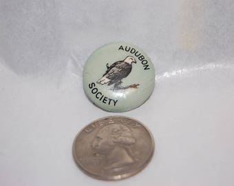 Audubon Society American Bald Eagle Celluloid Pin Back  by 'Gravure Corp.' 1920's Promotional Bird Pin Audubon Society