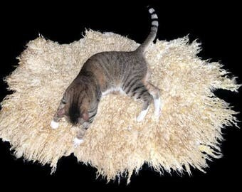 Cruelty Free, Romney, Cat Bed, Pet Bed, Dog Mat, Leather Free, Felted Wool Fleece, Ethical Sheepskin, Natural Cat Bed, Throw Rug, Pet Gift