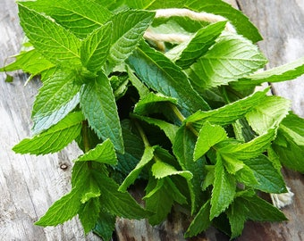 RAW Sun Dried Peppermint Tea - Loose Culinary Tea Blend Organically Grown, Hand Harvested Food Market Herbs and Spices Fresh Herbal Mint Tea