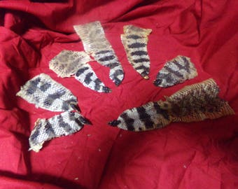 7 real animal tanned hide pelts snake skins tail rattle taxidermy parts