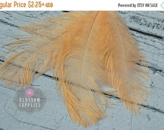 ON SALE Peach 8 - 9 Inches Ostrich Feathers - Plumes - Wedding Party Decorations - Headband Feathers - Bouquet Feather Bulk DIY fan - Bridal