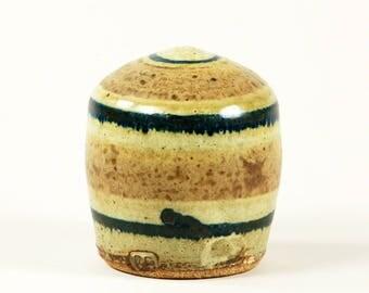 Potter's handmade ceramic salt shaker