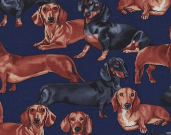 Timeless Treasures Fabric, Dachshunds, Dogs on Navy Blue