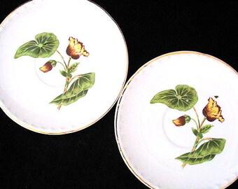 Delmar Begonia La Grande Saucers by Crooksville Vintage 1950s Pair