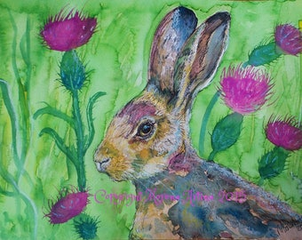 Hare and Thistles Print of  Watercolour and Ink Painting on Watercolour Paper Scottish Scotland