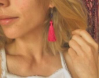Ruby Tassel and Lapis Earrings