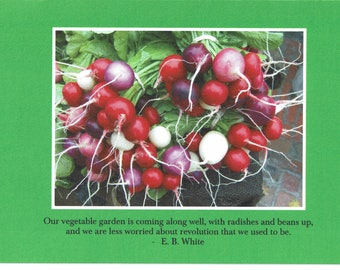 E.B. White quote - photo card