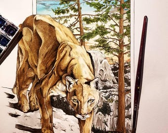 Mountain lion with Yosemite half dome background
