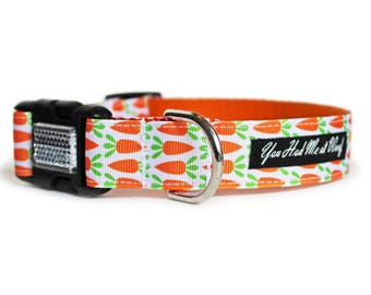 Easter Dog Collar with Carrots, Spring, Girl or Boy Dog Collar - Carrot Patch